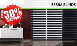 zebra-blinds1